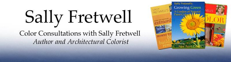 Power of Color Sally Fretwell
